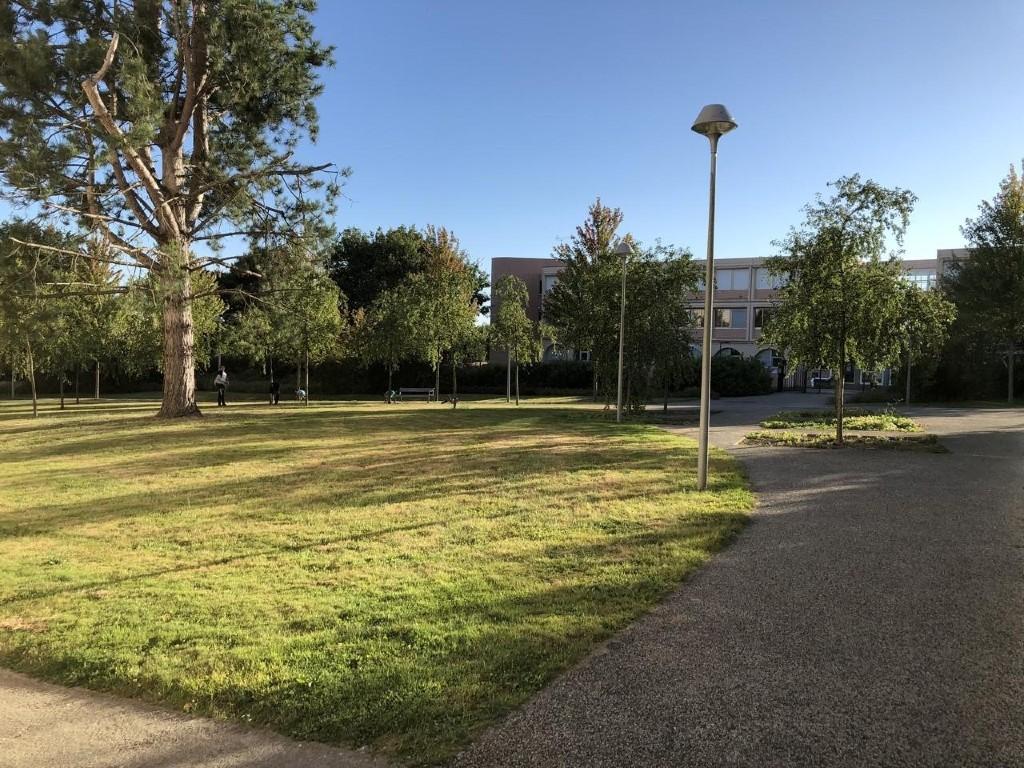 Le futur jardin partagé à Saint-Sauveur cherche des bénévoles